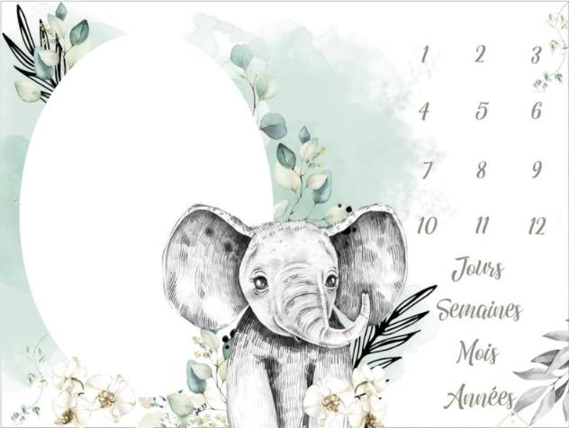 Tapis etape elephant